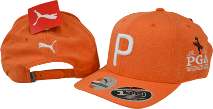Picture of PUMA YOUTH SNAPBACK CAP